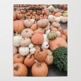Modern Pumpkin Patch Poster