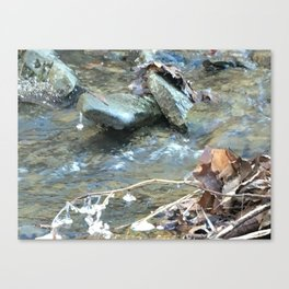 Frozen water drop Canvas Print