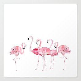 Flamingo Farm- Tropical Animal Bird World Kunstdrucke
