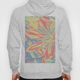 colorful blossoms Hoody