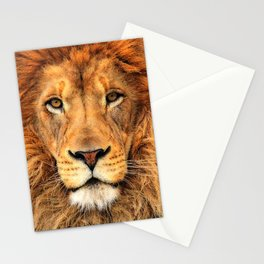Wild Cat Glare Stationery Cards