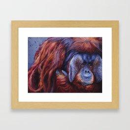 Rudi Framed Art Print