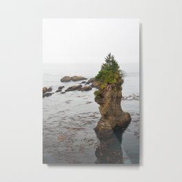 Cape Flattery Island Seastack Mist Misty Washington Olympic Peninsula Forest Pacific Ocean Metal Print