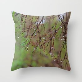 Silver Sterling Throw Pillow