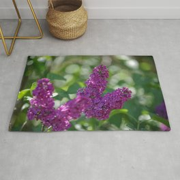 Lilac scent in the spring Rug