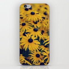 Hypnotizing Summer... iPhone & iPod Skin