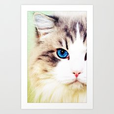 Eye of Cat - for iphone Art Print