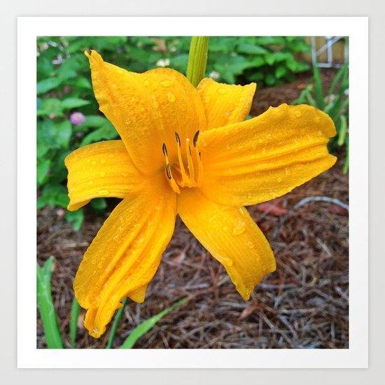 Yellow Raindrops Art Print