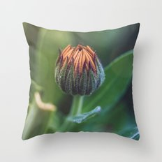 In the background Throw Pillow