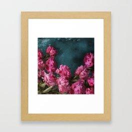 Peony Romance Teal Framed Art Print
