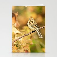 sparrow Stationery Cards featuring Sparrow by Shelby Babbert Photography