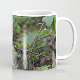Mushroom for Improvement Coffee Mug