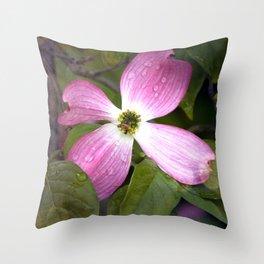 Cornus rosato Throw Pillow