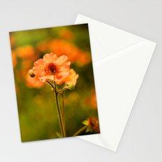 Wild Free Spirit Stationery Cards