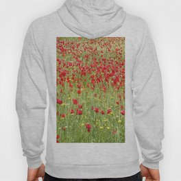 Meadow With Beautiful Bright Red Poppy Flowers  Hoody