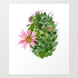Cactus Watercolor Pink Flower Cactus Art Print
