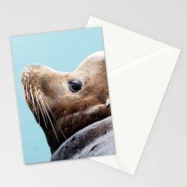 Sea Lion Blues Stationery Cards
