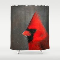 wildlife Shower Curtains featuring MALE CARDINAL - WINTER WILDLIFE by Christina Lynn Williams