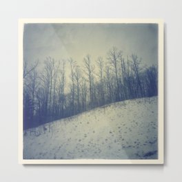 Winter scape #1 Metal Print