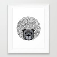 pit bull Framed Art Prints featuring Pit Bull by lllg