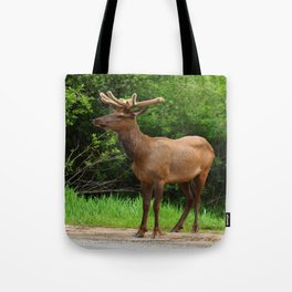 Wapiti At The Roadsite Tote Bag