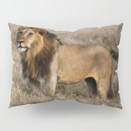 African Lion in Kenya Pillow Sham
