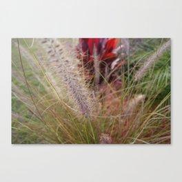 Fuzzy Stem Canvas Print