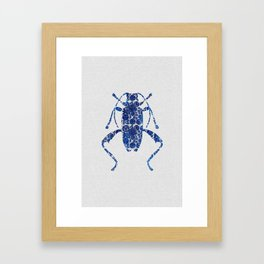 Blue Beetle IV Framed Art Print