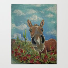 Desert Horse Canvas Print