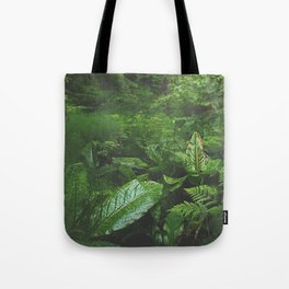 Old Growth Ferns Tote Bag