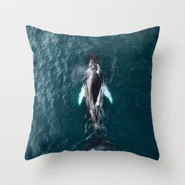Humpback Whale in Iceland - Wildlife Photography Throw Pillow