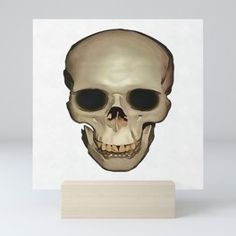 Antique Human Skull Mini Art Print