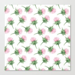 Pink thistel - Waterolor Canvas Print