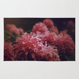 Pink Bellingrath Floral Rug