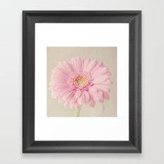 Summer Gerbera Framed Art Print