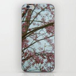 Dogwoods iPhone Skin