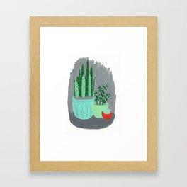 House Plants jade plant cactus snake plant Framed Art Print