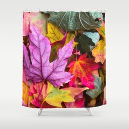 Leaf, Purple, Fall, Red Shower Curtain