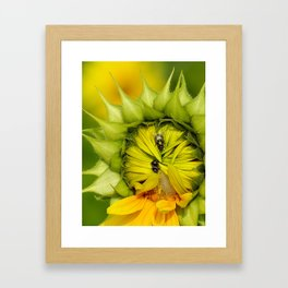 said the spider to the fly Framed Art Print