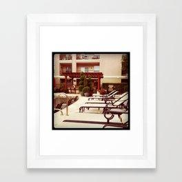 Houston Poolside Framed Art Print