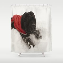 Briard in the Snow Shower Curtain