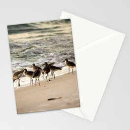 Birds on the Beach of Anna Maria Island Stationery Cards