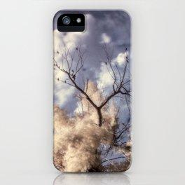 R72: Tree iPhone Case