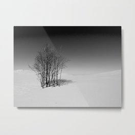 Silver Lake Sand Dunes Metal Print