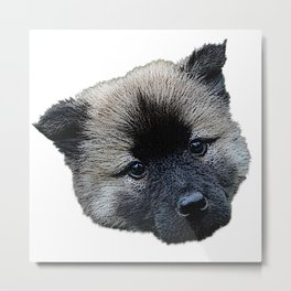 eurasian puppy, baby dog Metal Print