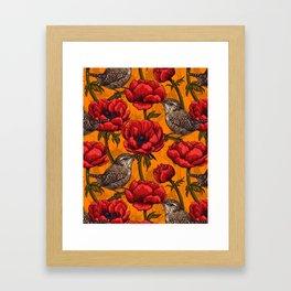 Wrens in a red anemone garden     Framed Art Print