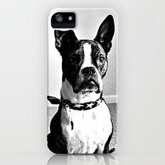 Bobo Slim Case iPhone (5, 5s)