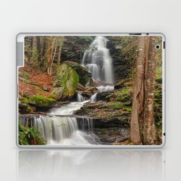 Ricketts Glen Waterfall Layers Laptop & iPad Skin
