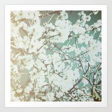 spring mediterranean almond flowers - golden orange Art Print