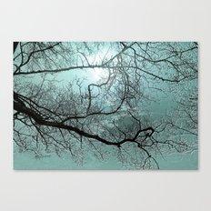 Blue Danube Canvas Print
